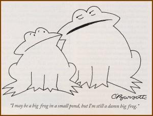Type 3 Frog